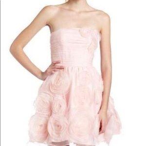 ‼️1 DAY SALE‼️Pink Betsy Johnson dress